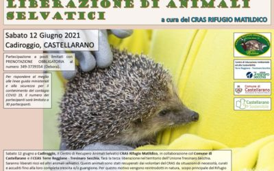 Liberazione di animali selvatici – CADIROGGIO (Castellarano)